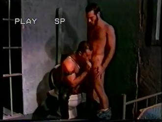 غريب أسود مص زب مثلي الجنس