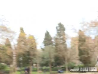 تزاوج الخيل والحمار Xxx مقاطع الفيديو المجانية Wowporn