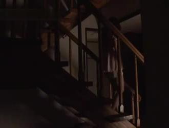 اكس همستر في المطبخ