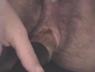نيك الحامل والمرضعة في الكس سكسي