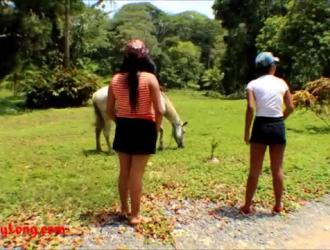Www Xxxx حصان مع بنت
