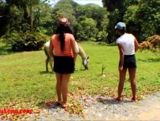 تحميل سكس حصان ينك بنات