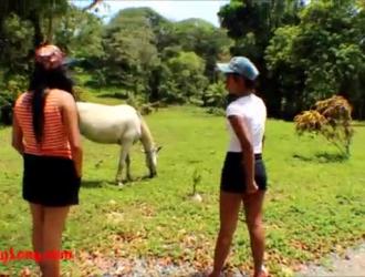 سكس خيول جامد شديد