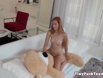الدب الايروسي
